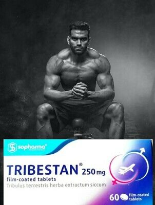 Gaining Muscles with Tribestan